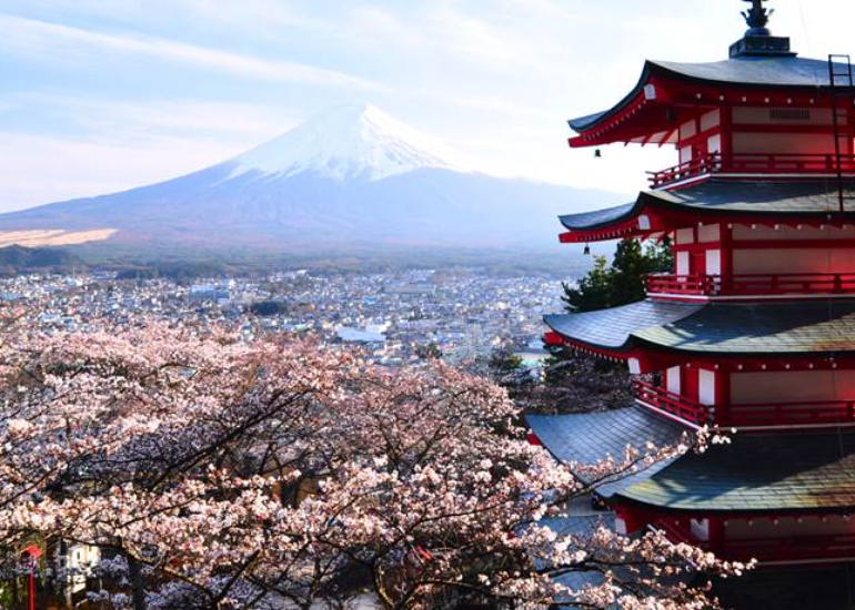 JAPONIA – tara de origine a produsului Scallo-P