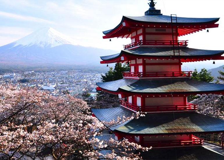 JAPONIA – țara de origine a produsului Scallo-P